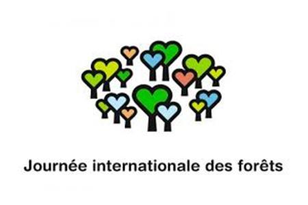 Stand > Teragir - Journée internationale des forêts